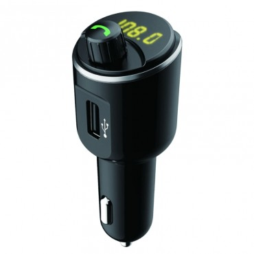 "FM Transmitter ""RS SkySound"""